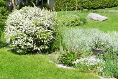 Landscaping Oakton Va Green Hill Landscaping