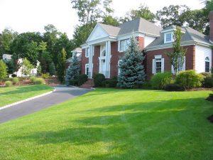Landscaping Reston VA