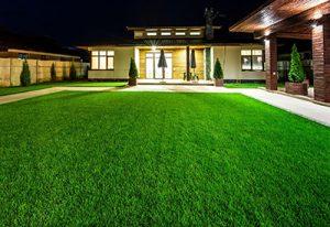 Lawn Treatments McLean VA