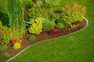 Lawn Treatments Oakton VA